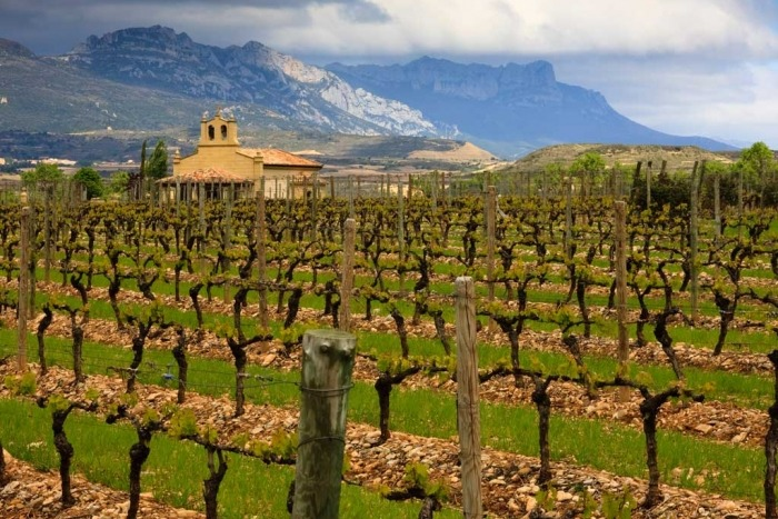 French Pyrenees and Spain's Rioja Region Bike Tour