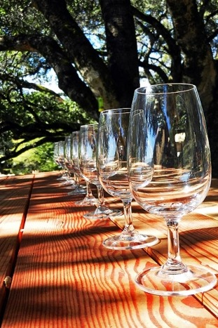Wine tasting - Backroads California Wine Country Bike Tour