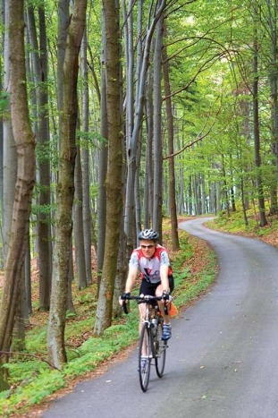 Biking in Forest - Czech Republic & Austria Bike Tour