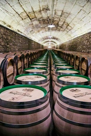 Wine barrels - Backroads Basque Country Multi-Adventure Tour