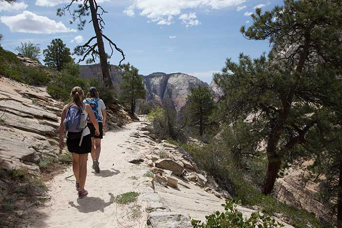 Zion Family Hiking Tours