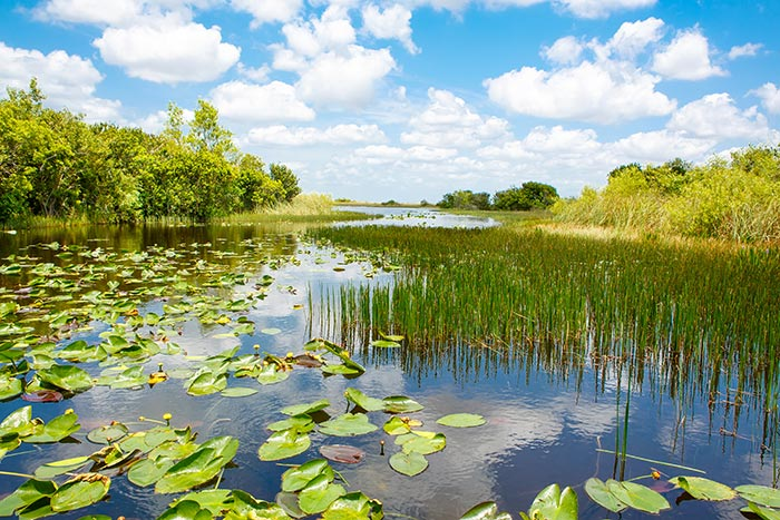 Backroads Everglades to Key West Family Breakaway Multisport Adventure Tour