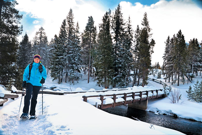 Yellowstone and Tetons winter snowshoe tours