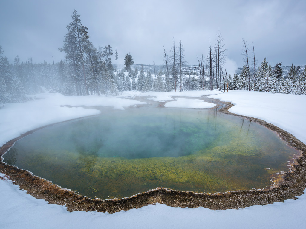 Yellowstone & Tetons Snow Adventure Tour