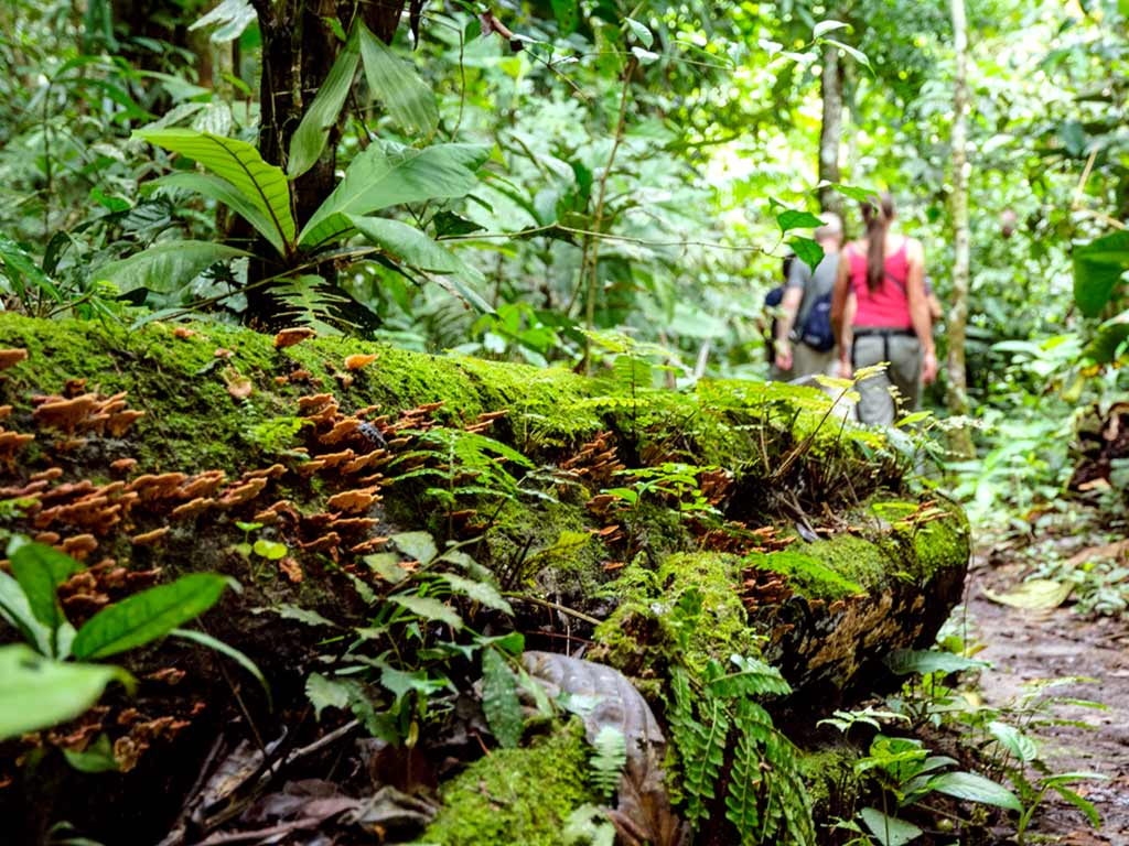 Backroads Galápagos, Andes & Amazon River Cruise Walking & Hiking Tour